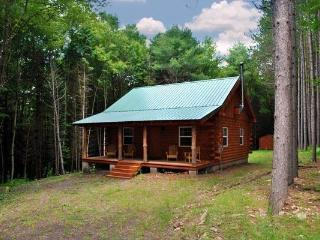 Secluded New Built Log Cabin! Near Cooperstown, Oneonta