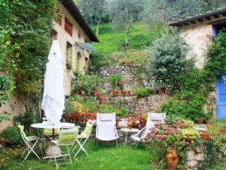 Antico Oliveto - Casa dei Fiori, Camaiore