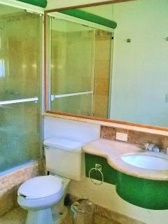 baño principal con tina