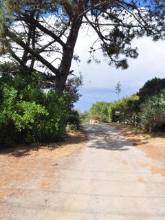 Enter a relaxed beach lane