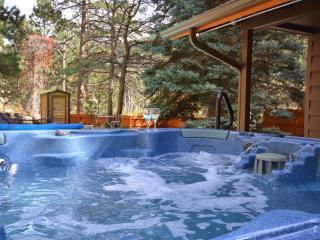 Private Cabin on River - Heated Pool, Hot Tub, SPA, Estes Park