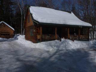 Greenville Log Cabin w/ Bunkhouse