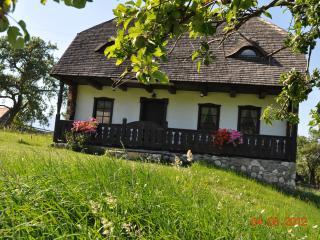 Grandma's House, Bran