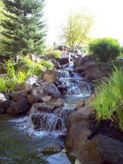 homemade stream on site