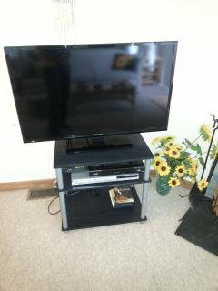 40' Flatscreen HD TV in living room and DVD player