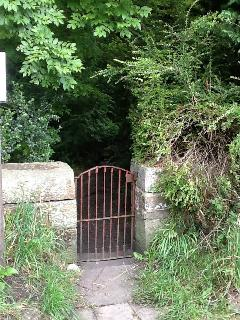 Woodland entrance at the side of Fitzys cottages