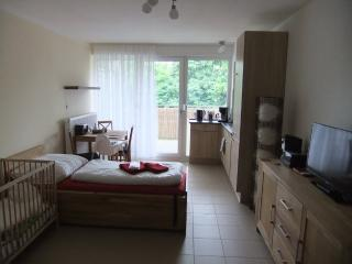 Vacation Apartment in Nuremberg - 377 sqft, central, spacious, modern (# 4899), Núremberg