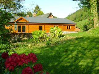 Forest Lodge private Hot Tub, Mid Wales SY16 4DW. Superfast fibre WiFi, Newtown