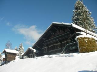 Traditional Swiss Chalet Villars Ski-in ski-out! Beautiful Views. Sleeps 12
