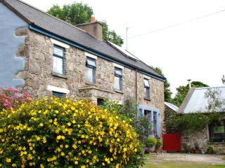 Room in quiet cottage near Shannon airport, places of interest and hiking trails, Feakle