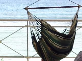 La vue depuis la chaise-hamac