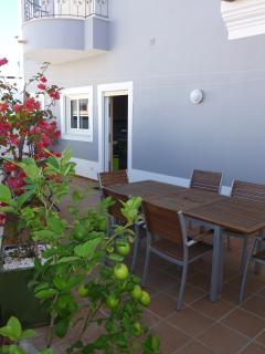 Barbeque and outdoor dining area at the rear of the house