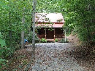 The cabin tucked in the secluded area