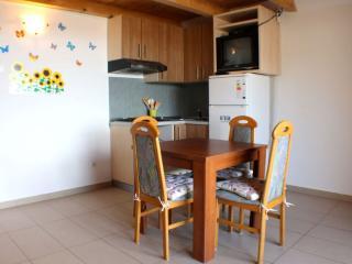 Studio apartment for 4 people, Novalja