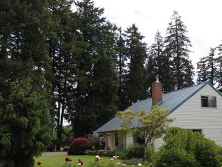 4 bd farmhouse resting in 40 acres of hazelnuts, Hubbard