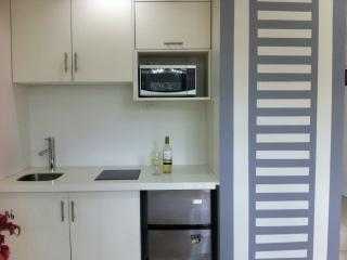 COSTA RICA, VISTA DE ORO, BRAND NEW APARTMENT, Escazú