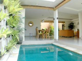 Nicole Villa 2 bedroom villa, Canggu