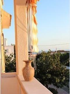 Questa è la splendida vista che si gode dalla veranda, per pregustarsi il mare cristallino a 100 m