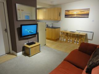 Living area with 32' flat screen TV & DVD player