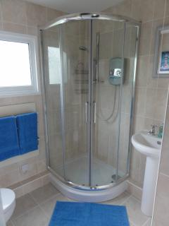 Full size corner electric shower