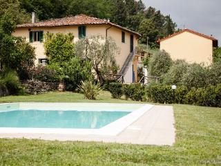 Apartment Calla, Lucca