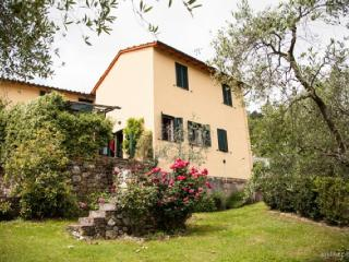 Cottage Gelsomino, Lucca