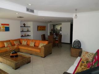 Hermoso Penthouse en Santa Marta
