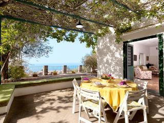 Villa Teresa,garden and terraces with sea view