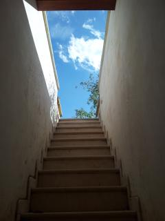 STAIRCASE TO THE ROOF GARDEN