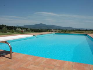Farmhouse,private pool, hudge park,panoramic view, Castiglion Fiorentino