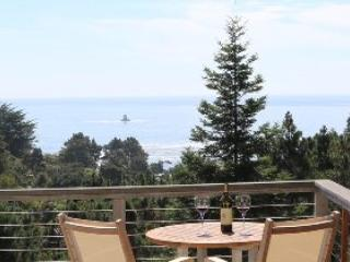 Ocean View Luxury on the Mendocino Coast