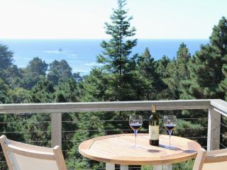 Ocean View Luxury on the Mendocino Coast