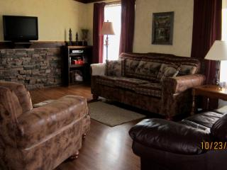 Cabin living room with satellite tv; queen size sofa bed; cozy fire
