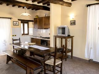 Il Roseto-a lovely rental in Cortona countryside