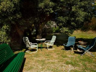 Il Colle-Cortona rental between Tuscany & Umbria