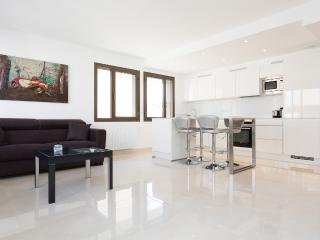 Fully renovated 1 bedroom in Gray d'Albion 243, Cannes