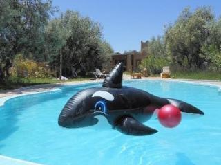 Villas piscine et SPA - DAR ACHORAFA -