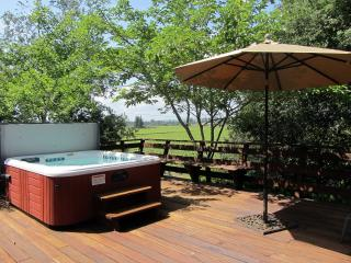 Country Home ~ your private hot tub overlooking estate vineyards
