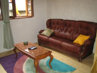 Charming 2 bedroom apartment in Dinan - B001