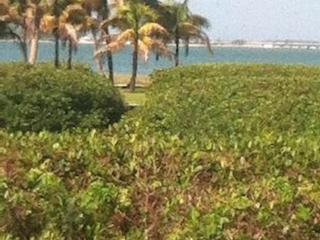 One minute walk to gulf beaches, Big, 3 BR, 55 inc, Sanibel