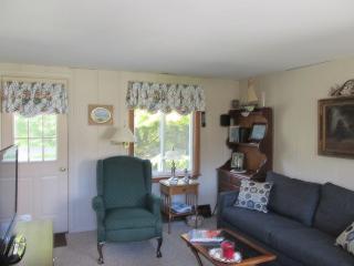 Den with sleep sofa and flat screen TV