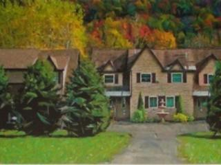 Private Townhome with  serene flowing creek, Ellicottville