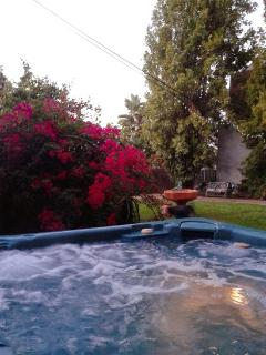 Large lovely tranquil garden with bougainvillea, tall shady trees and large hot tub for relaxing