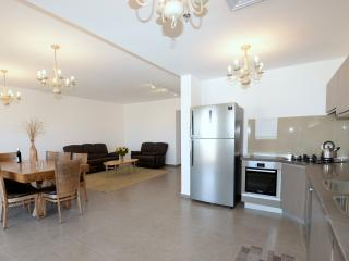 4BR Luxury Apt in Downtown Jerusalem Saidoff Tower