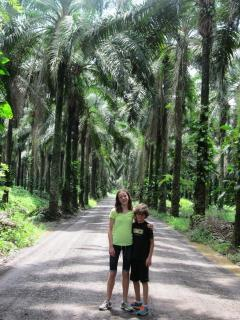 Grandchildren at the entrance to the palm plantation