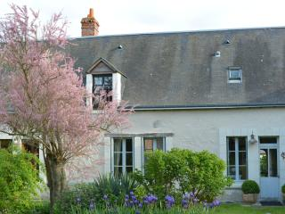 Stylish Loire Village House with Pool on 2 Acres, Loches