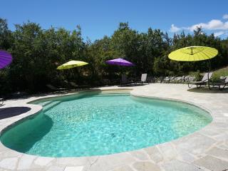 Haute Provence, La Buisse Gîte Lure 4p, tennis, piscine chauffée, spa, sauna