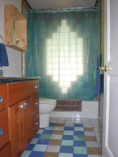 Opague glass wall lets in the light in the upstairs bathroom