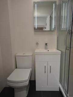 Shower room with WC and basin