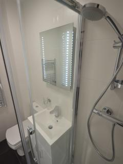 Alternate view shower room